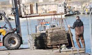 5779   Port ostréicole - le port ostréicole de Bourcefranc