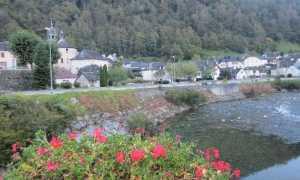 5782   Bord de Gave - Village vallée Pyrénéenne