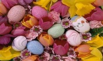 1737   Oeufs en fleurs - Oeufs de Pâques peints - Parmi les fleurs, celles du jardin ou celles du salon. Marbrés, décorés de frises, coquille d'oeuf en couleur...les préparer ou les trouver : toujours la même joie renouvelée.