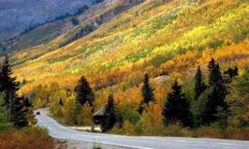 1956   Route d'Automne - De telles routes encouragent à faire l'école buissonnière en particulier en cette saison où les couleurs les plus riches se rassemblent pour le plaisir des yeux.